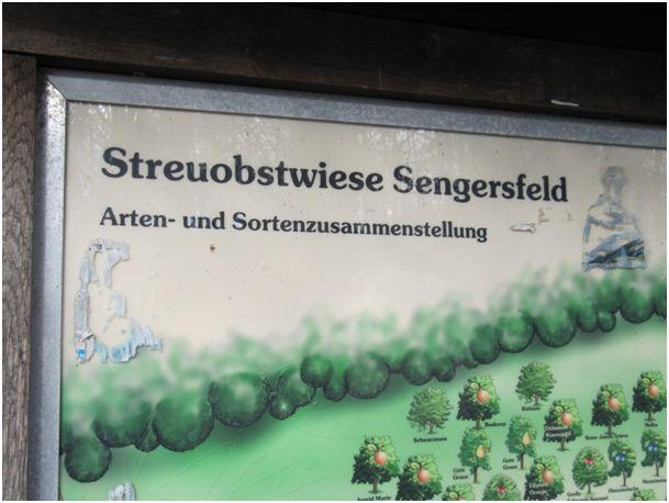 Streuobstwiese im Göttinger Stadtwald