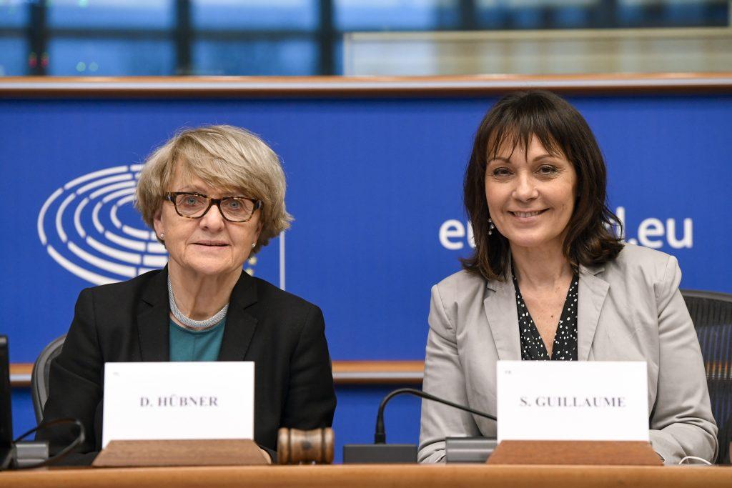 Transparency Register Parliament's lead negotiators Danuta Hübner and Sylvie Guillaume