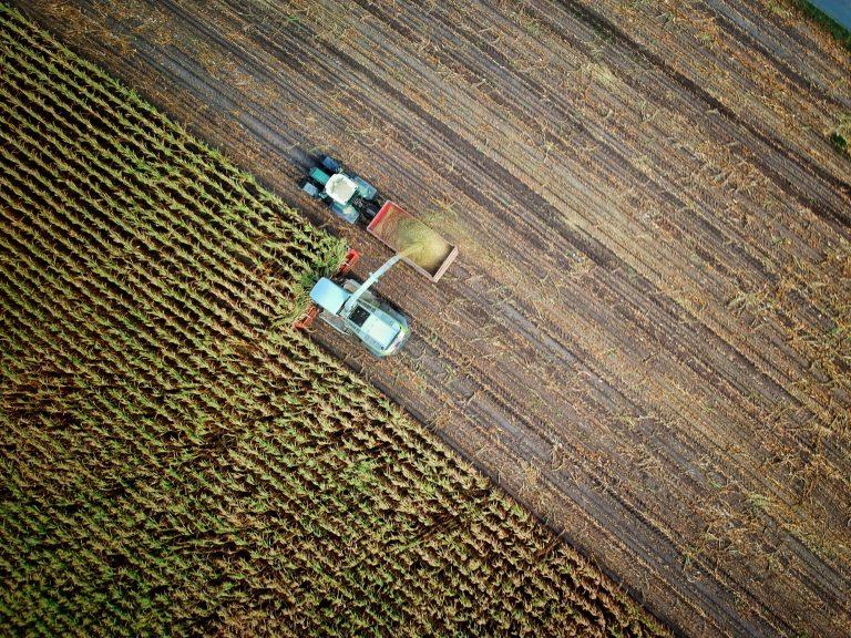 Landwirtschaft GAP CAP
